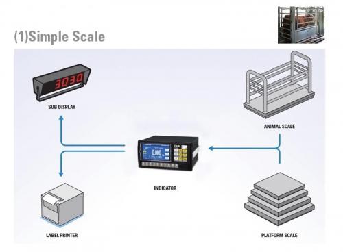 CI-600 A Canlı hayvan Tartım Uygulaması örneği